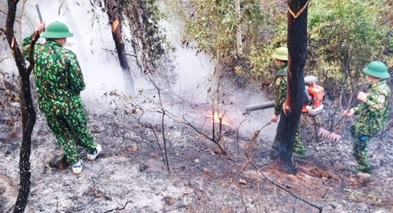cháy rừng,nắng nóng gay gắt,Nghệ An