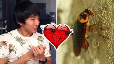 Thanh niên Nhật hẹn hò với gián, thanh niên Thái đem gián đi trị vết thương