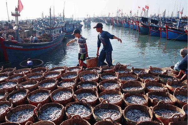 Cà Mau tập trung 4 mũi nhọn phát triển kinh tế biển
