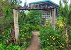 Phòng nghỉ nhà giàu villa, farmstay giá rẻ ngang nhà trọ, chủ mời khách đến ở cho có hơi người