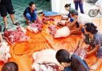 Người dân mổ lợn hơn 2 tạ, làm xúc xích, chà bông gửi người dân Bắc Giang chống dịch