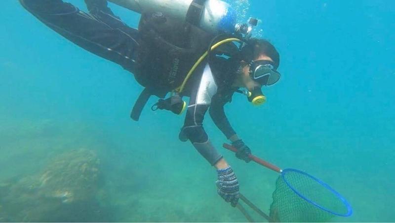 quảng nam,san hô,cù lao chàm,môi trường,làm sạch biển,bảo vệ môi trường