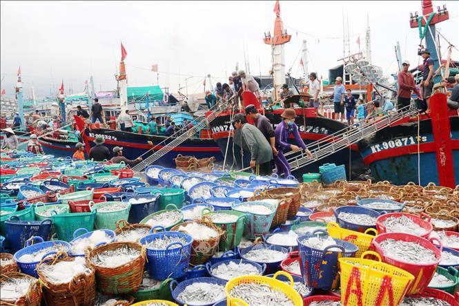 Tổng sản lượng thủy sản 5 tháng đầu năm ước đạt gần 3,3 triệu tấn