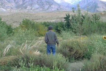 Người đàn ông sống giữa sa mạc suốt 20 năm để tạo ra 'điều kỳ diệu'