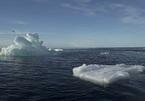 Tham vọng Bắc Cực của Trung Quốc khiến Nga 'dè chừng'?