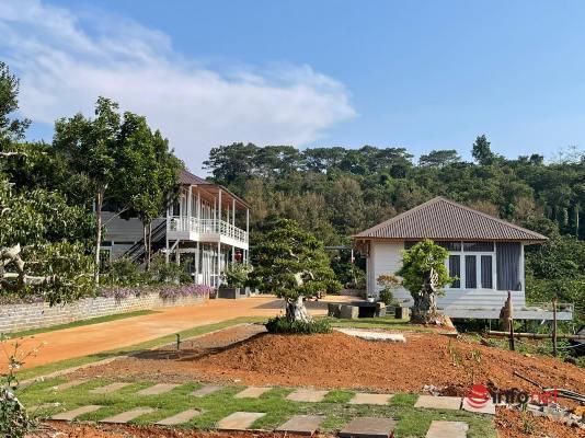 thủy điện Đắk R'tih,xây nhà vườn trái phép,chủ tịch huyện Đắk R'lấp