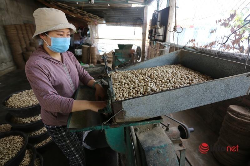Dầu ăn tự ép từ hạt lạc của người xứ Quảng có gì độc đáo