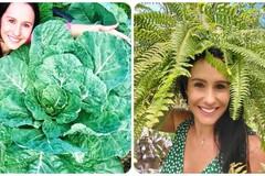 Khu vườn tuyệt vời của cô gái trồng được loại rau khổng lồ