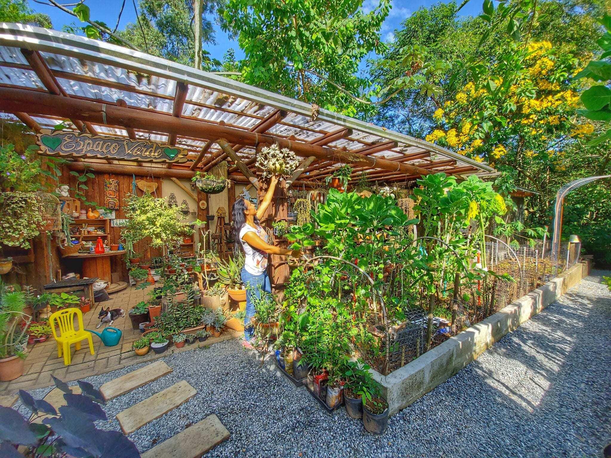 làm vườn,brazil,khu vườn đẹp
