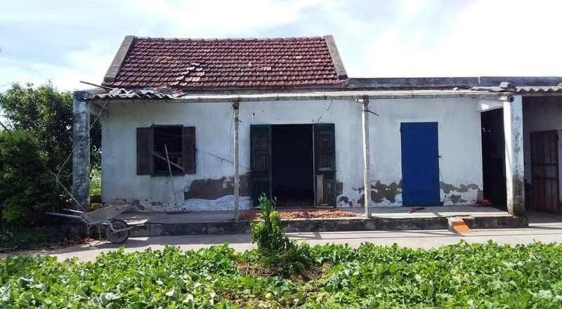 bão số 2,Nam Định,tốc mái nhà,hỏng đê,thiên tai,hậu quả thiên tai