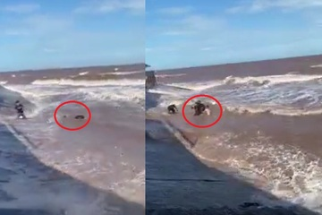 'Đứng tim' xem clip cứu thanh niên bị đuối nước ở biển Nam Định