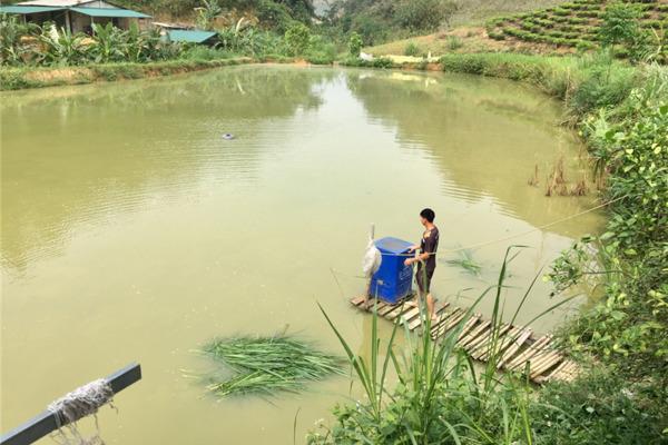 Lào Cai: Chính sách dân tộc giúp đồng bào cải thiện cuộc sống