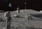 Giúp NASA đặt tên cho hình nộm trên Mặt Trăng