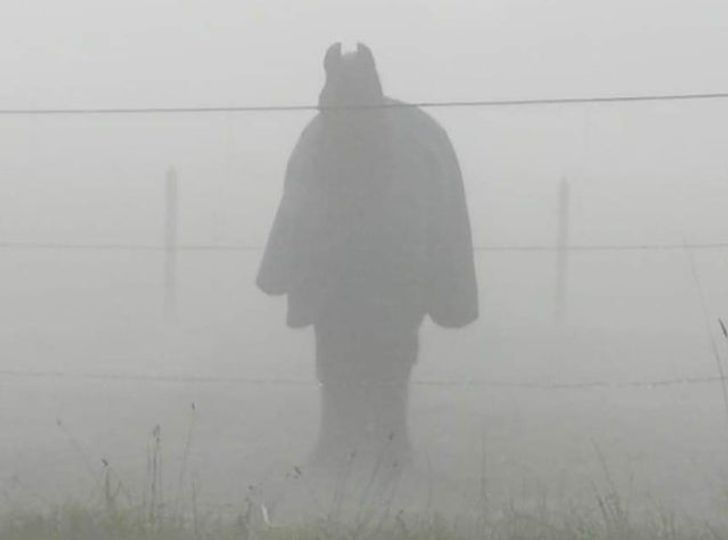 Những hình ảnh 'độc lạ' dễ gây hiểu nhầm nhất thế giới