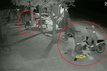 Dân mạng 'sốc' khi xem clip 2 tên trộm chó hung hãn chống trả chủ nhà