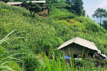 Ninh Bình: Phát triển kinh tế vùng dân tộc thiểu số