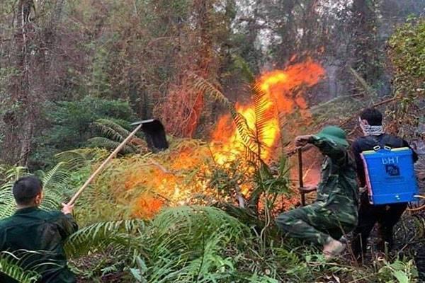 Huế: Cháy rừng thông xuyên đêm ở đỉnh núi Phú Sơn