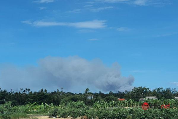 cháy rừng,cháy rừng thông,Thừa Thiên Huế,cháy dữ dội,nắng nóng gay gắt