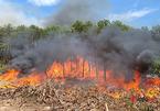 Cháy lớn trên đồi Eo Gió, khói lửa bốc cao ngùn ngụt giữa trời nắng nực