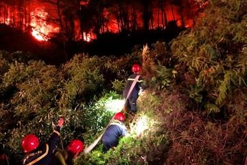 Nhiều tiếng nổ trong đám cháy rừng tại Thừa Thiên Huế