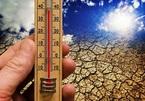 Nhiều người tử vong vì nắng nóng bất thường ở Canada