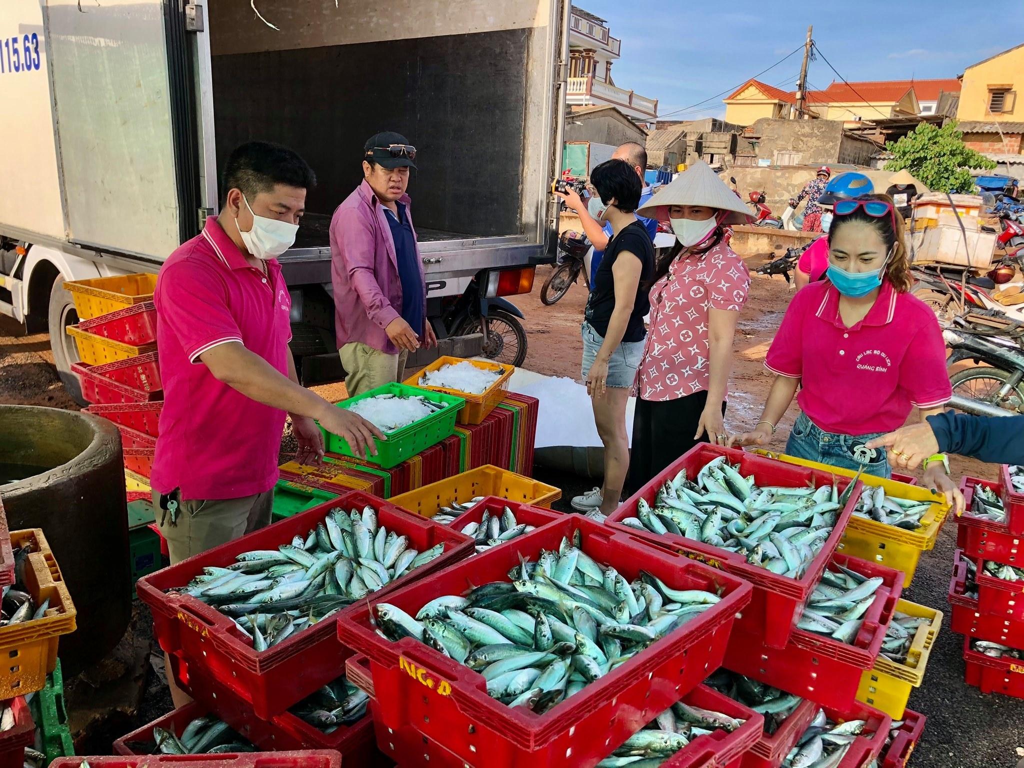 góp cá,TP.HCM,Quảng Bình