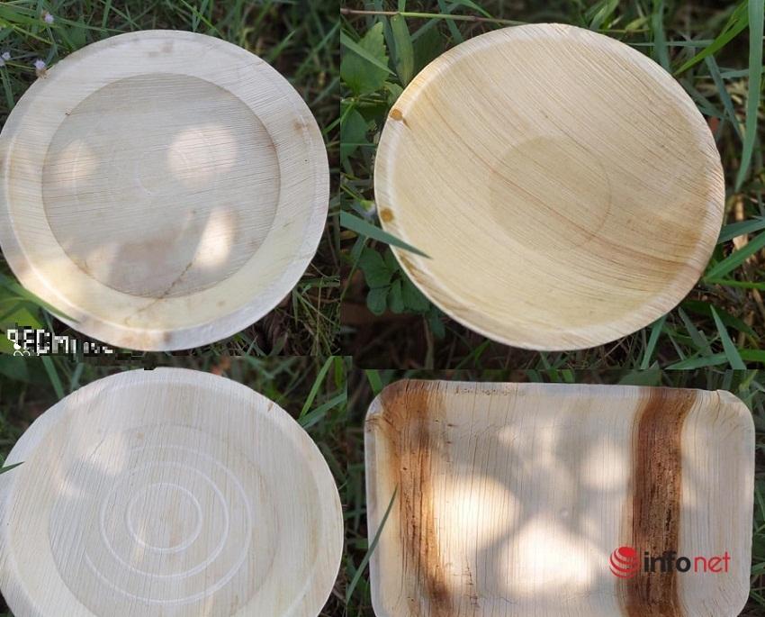 Ép lá cây thành đĩa dùng một lần, xuất đi châu Âu
