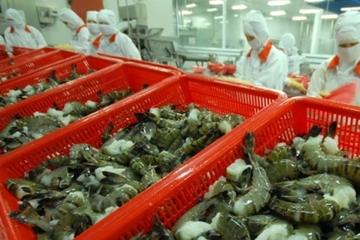 5 tháng đầu năm, xuất khẩu tôm sang thị trường CPTPP tăng mạnh