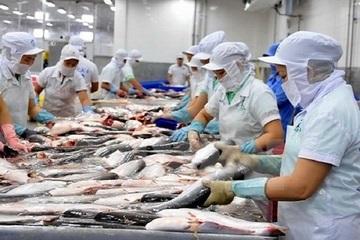 Kết quả tích cực về rà soát chống bán phá giá cá tra, basa Việt Nam tại Hoa Kỳ