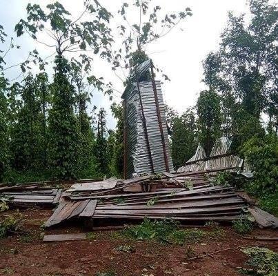 Đắk Nông: Hàng trăm tấn sầu riêng trôi theo dông lốc, mưa đá