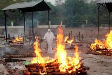 Tro của bệnh nhân Covid-19 ở Ấn Độ được dùng để xây công viên