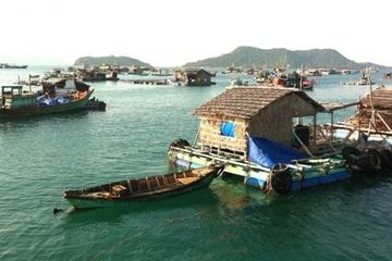 Kiên Giang phấn đấu đến năm 2030 toàn tỉnh có 14.000 lồng nuôi biển