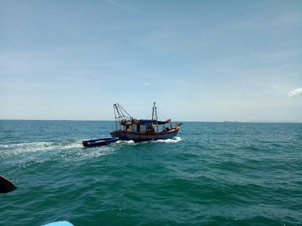 Nghệ An: Xử lý 5 chủ tàu cá vi phạm về khai thác thủy sản