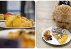 Nhà hàng dành riêng cho chó cưng phục vụ đủ món từ pizza, sushi đến gà rán
