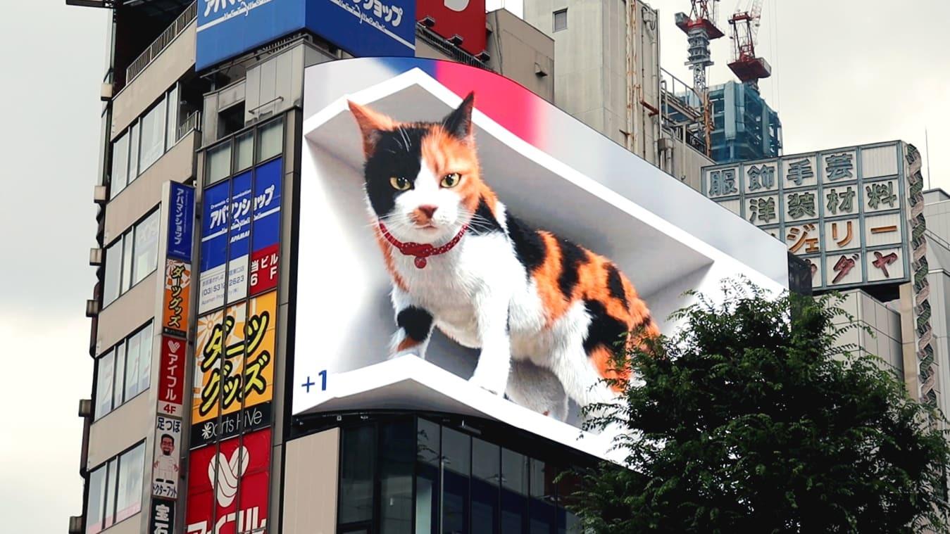 Giật mình mèo 3D khổng lồ cử động như thật lơ lửng trên tòa nhà cao tầng