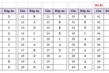 Tham khảo đáp án môn Toán thi tốt nghiệp THPT mã đề 119