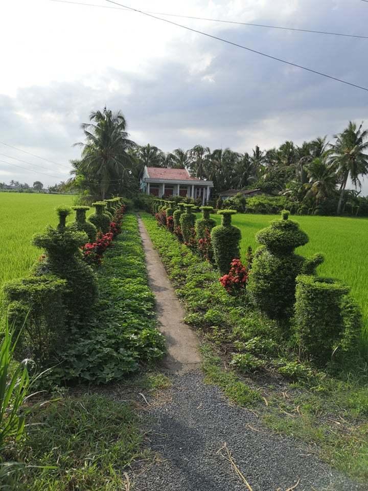 Trầm trồ ngắm hàng cây kiểng 100m được tạo dáng công phu trước cổng nhà