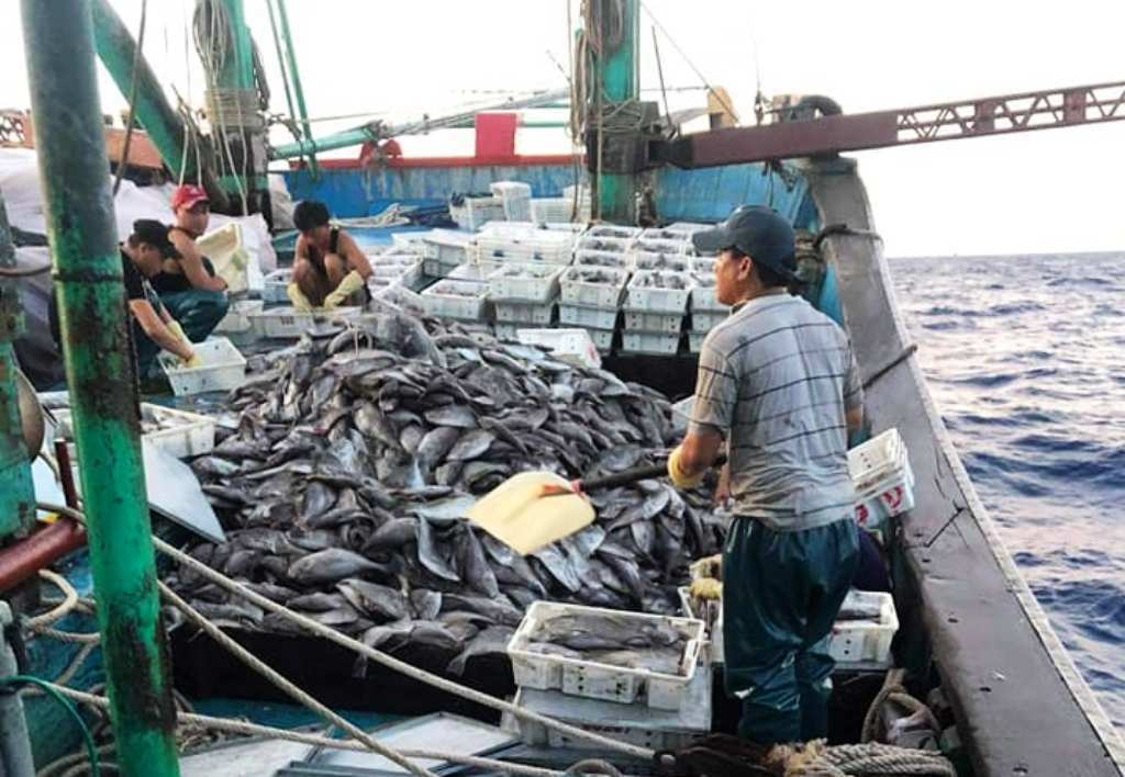 Áp thấp nhiệt đới, tàu cá Nghệ An bị sóng đánh chìm, 8 thuyền viên may mắn thoát chết