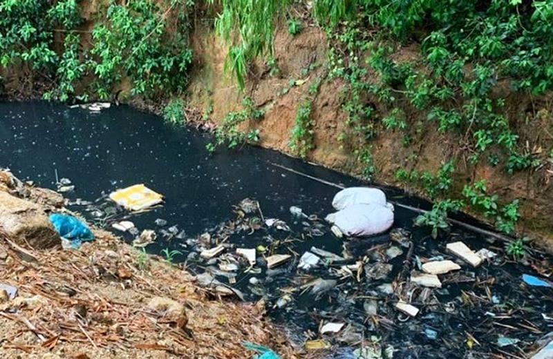 Quảng Nam: Bắt quả tang cơ sở mua bán phế liệu gây ô nhiễm môi trường