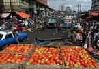 Chuyên gia IMF cảnh báo về nạn đói và giá lương thực tiếp tục tăng