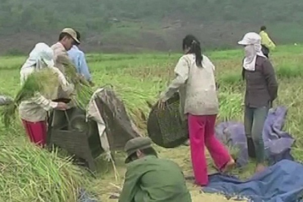 Thanh Hóa: Chính sách dân tộc - điểm tựa để người dân thoát nghèo