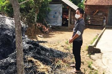 Quảng Nam: Tàn cuộc nhậu, hai thanh niên rủ nhau đi đốt ụ rơm trong làng