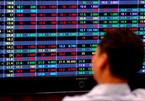 Chứng khoán lao dốc, nhà đầu tư nên làm gì?