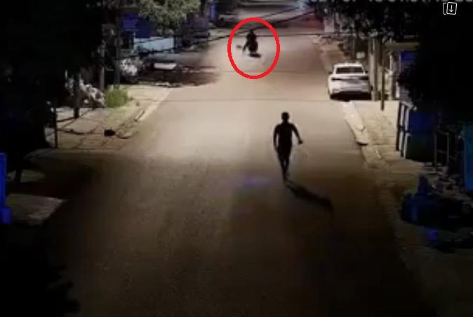 """Con chó khôn lanh khiến hai kẻ trộm chó rượt đuổi chán phải """"chào thua"""""""
