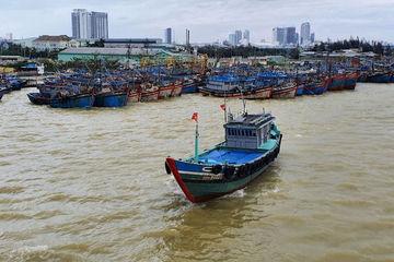 Đà Nẵng: Nâng cao năng suất khai thác thủy sản để bảo đảm đời sống ngư dân