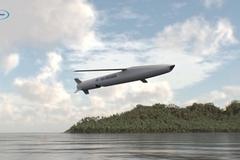 Israel ra mắt tên lửa hành trình thế hệ thứ 5 Sea Breaker