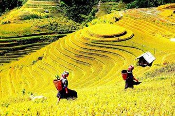 """Bát Xát (Lào Cai) tổ chức cuộc thi """"Vẻ đẹp du lịch Bát Xát"""""""