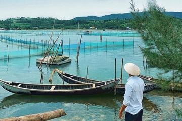 Phú Yên ưu tiên nuôi trồng thuỷ hải sản phát triển bền vững