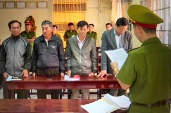phá rừng,mất rừng,mất đất rừng,công ty lâm nghiệp,Ea Kar,Đắk Lắk
