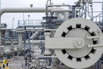 Cựu giám đốc tập đoàn dầu khí Ukraine 'hiến kế' ngăn chặn Nord Stream 2